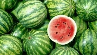gallery/watermelon